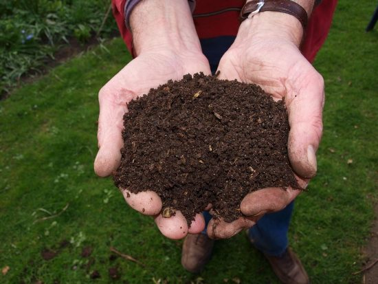 How To Start A Compost Heap With Leftover Food from Family Meals